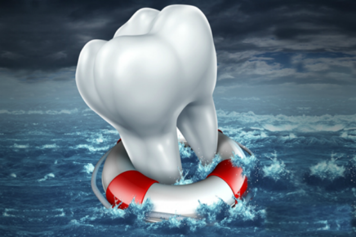 Tooth on Life Preserver 2
